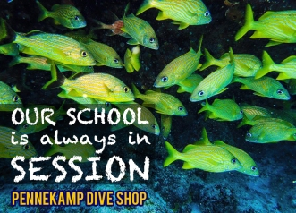 21_school_in_session